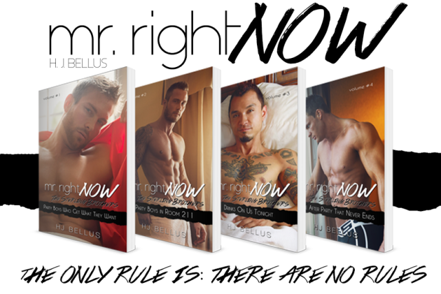 Cover Reveal Mr Right Now Series By Hj Bellus The Book Nuts