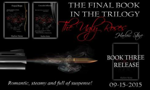 Book 3 Promo